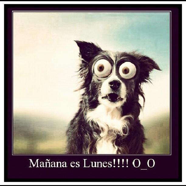 En Realidad ya es lunes.!! #feliznoche mis queridos seguid ...