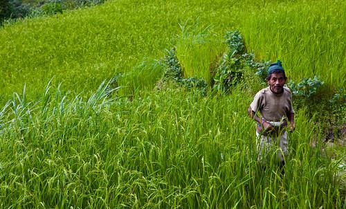 nepal geotagged himalaya annapurnacircuit npl bahundanda lampata pashchimanchal geo:lat=2833408333 geo:lon=8440346667