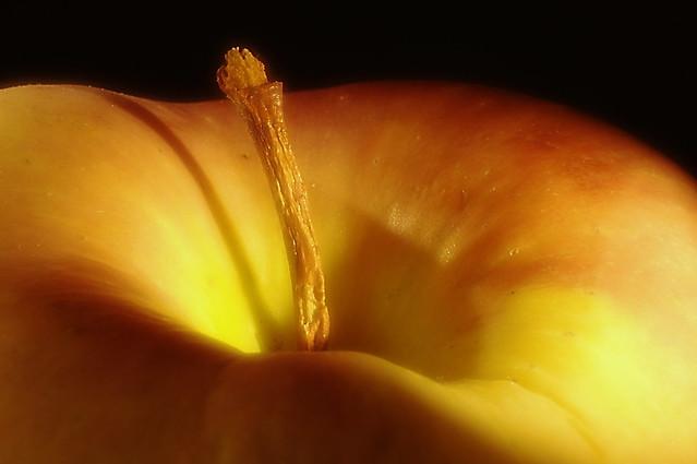 mela, picciolo, natura morta studio I