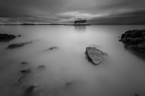 pictures california longexposure bw fog canon photography blackwhite day fineart le lightroom bonsitree niksoftware induro ct214 silverefexpro tobyharriman chinacheac