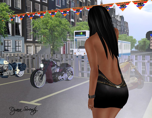 Hells Angels Netherlands by Dyana Serenity