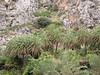 Kreta 2004 020