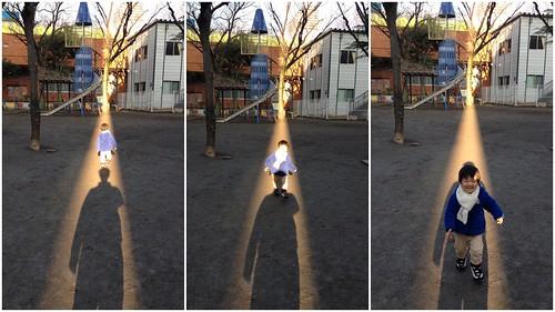 光の道 恵比寿公園にて 2013/1/25