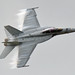 Super Hornet by Texas Flyer