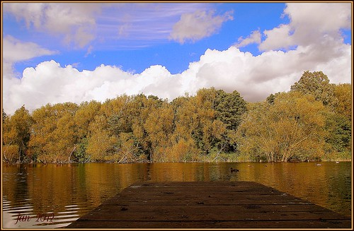 autumn lake fall reflections boardwalk birminghamuk lovelyday plantsbrooknaturereserve mygearandme rememberthatmomentlevel1 sunrays5