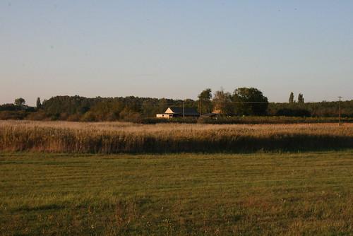 field training hungary tanya farm ungarn 2012 hongrie puszta tréning ősz október lajosmizse céges geréby képzés kúria vállalati gerébi