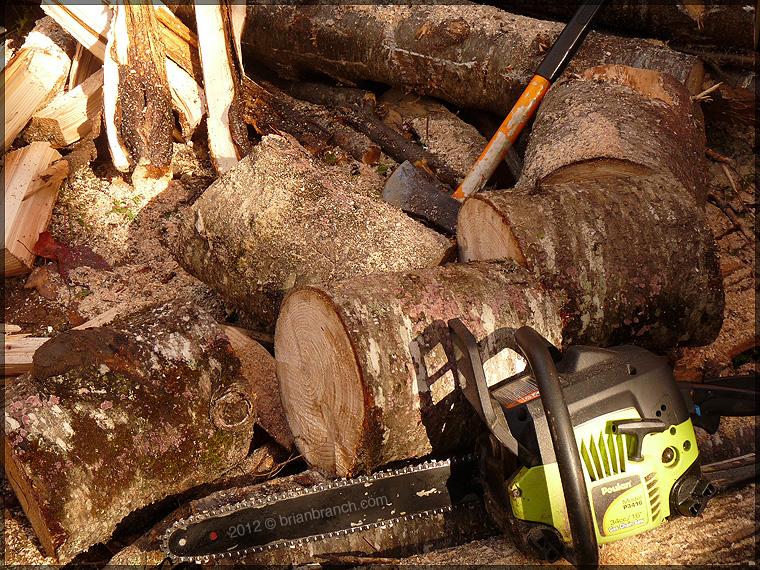 P1280853_fire_wood