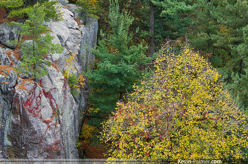 morning autumn trees red orange color green fall yellow pine wisconsin sunrise early october rocks colorful view pentax cloudy scenic vine cliffs boulders evergreen needles westpoint gibraltarrock lodi kx countypark columbiacounty pentaxa50mmf17