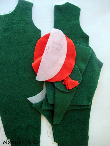 Dinosaur Costume (4)