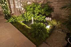 courtyard(0.0), soil(0.0), tree(0.0), lawn(0.0), backyard(1.0), flower(1.0), garden(1.0), landscape lighting(1.0), grass(1.0), yard(1.0), green(1.0), landscaping(1.0),