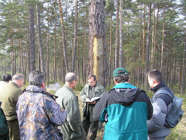 Backyard Forest Stewardship : Forest stewardship council certification  Flickr  Photo Sharing!