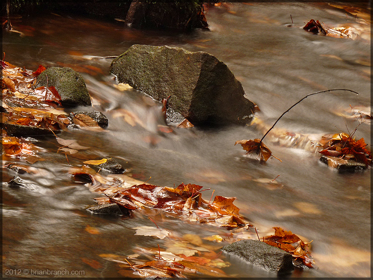 P1280986_fall_brook