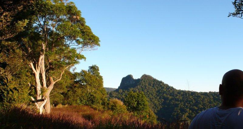 Mount Cougal - Springbrook National Park