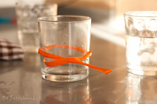 o meu vaso con lazo