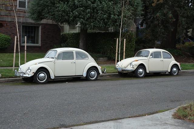 duo bugs
