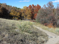 Castlewood Canyon State Park 023