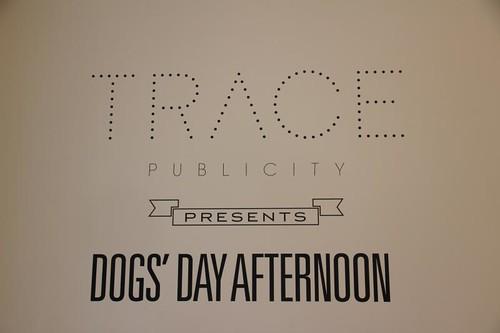 Trace Publicity
