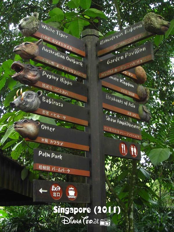 Day 3 Singapore - Zoo Singapore 12