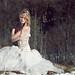Snow Fairy by Lucia Mondini