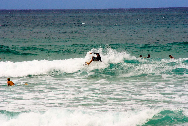 surfing, north shore, oahu