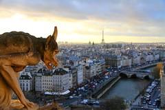 Cathédrale Notre-Dame de Paris . [Explored ]