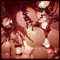 am I in #heaven ?  #decoration #lamps #lampion #sakura #cherryblossoms #interior #beautiful #cute #white #pink