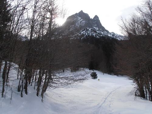 Plateau de BIOUS 095