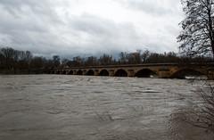 La Moselle - Pont des Morts