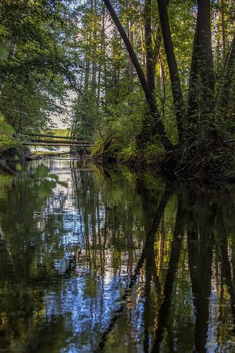 suomi summer syksy finland forest luonto light kuusankoski kouvola kesä autumn landscape metsä maisema joki river puu tree taivas sky heijastus reflection kymi kymijoki kymenlaakso scandinavia
