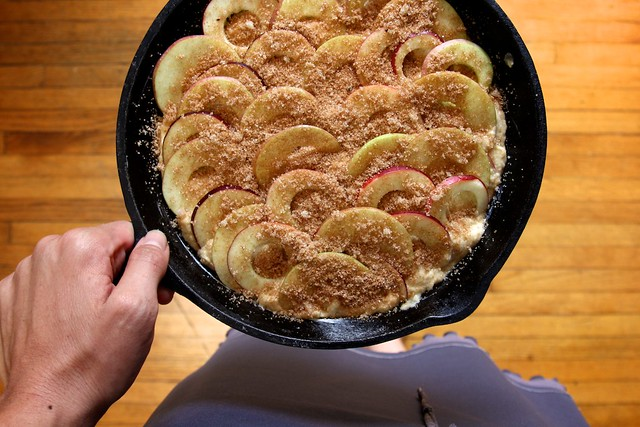 Cinnamon-Sugar Apple Skillet Cake | Joy the Baker