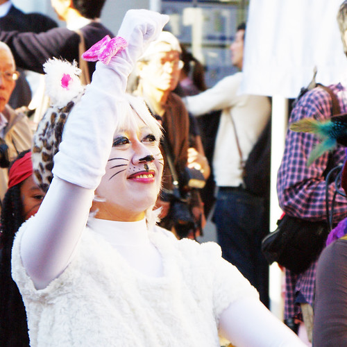 Kagurazaka Cat Halloween 2012-12