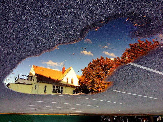 Puddle of Fall (Arts at the Armory parking lot), Somerville