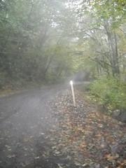 Foss Road