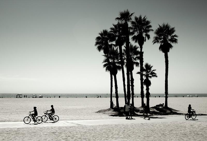 3314 Venice Beach