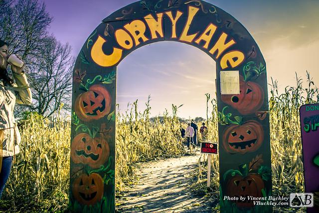 Corny Lane