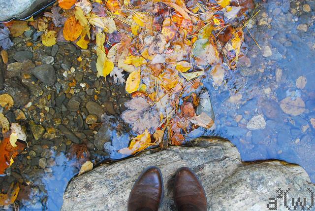 Fall drive 2012