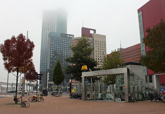 Denver Metro Food Bank