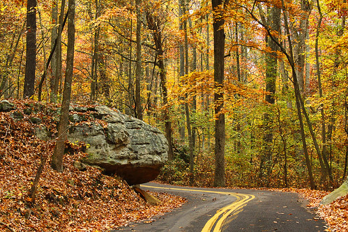 road autumn trees orange fall chattanooga leaves rock woods october tn tennessee country boulder walden signalmountain