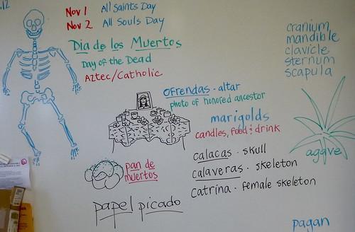 Geo and FAS Magnet / Dia de los Muertos by trudeau