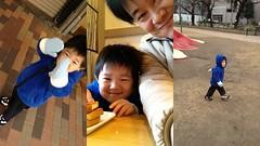 朝の散歩 2013/1/5