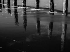 Photograph: Post reflection