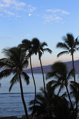Maui - morning beach view
