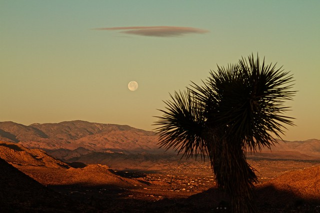 Joshua Tree National Park, California - This picture was taken at the entrance of joshua tree national park. While park officials if asked might say that there are no good spots unlike other parks for sunrise and sunset. Any where you have mountains in the background and valley in foreground can help showcase colors of the sky in this dessert.
