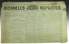 Bicknell's reporter