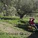 PhilipMagee_20121228_c288732
