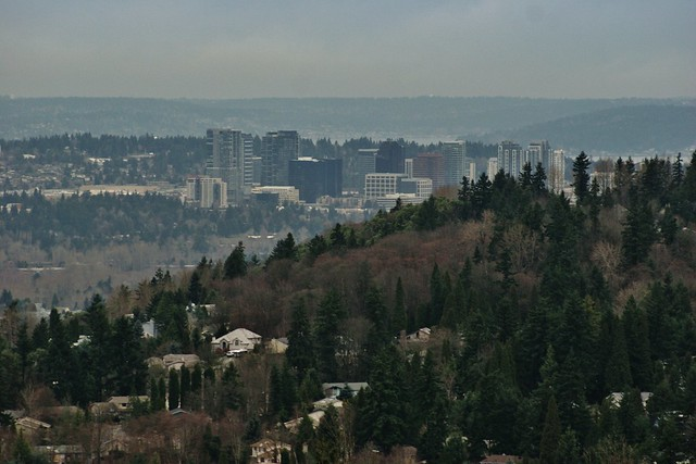 Bellevue Skyline from Newcastle Golf Course