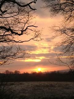 Sunrise before snowfall