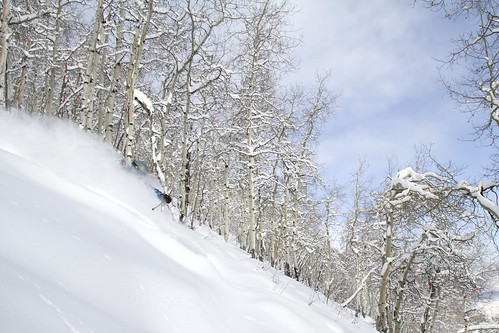 Jed Schuetze enjoys 10 inches of fresh powder on Tuesday morning at Beaver Creek.