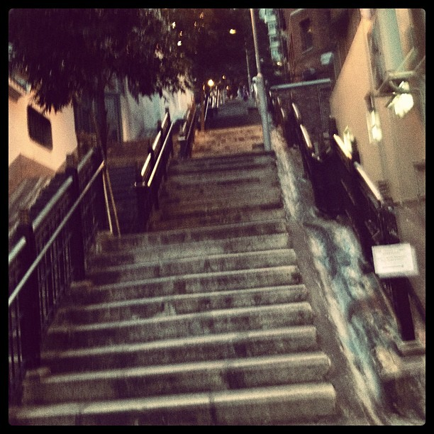 Rush hour and couldn't get a cab. So we walked up three huge city blocks on a path called Ladder Street. My thighs are mush. Operation Tight Buns now in effect. #thingsidoforyakitori #hk #hongkong #ladderstreet #stairs #yardbird