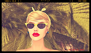 FrenchVintage couture -Rose Sunglasses
